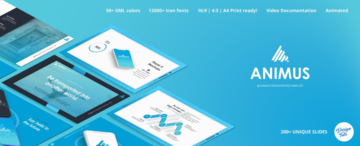 Lymo Powerpoint Presentation Template - 24